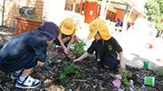 Preschool gardening