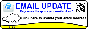 Update your email details